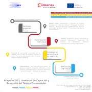Infografia proyecto YES - pedropluque